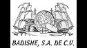 logo de Badishe