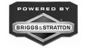 logo de Briggs & Stratton Mexico