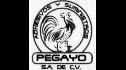 logo de Adhesivos y Suministros Pegayo